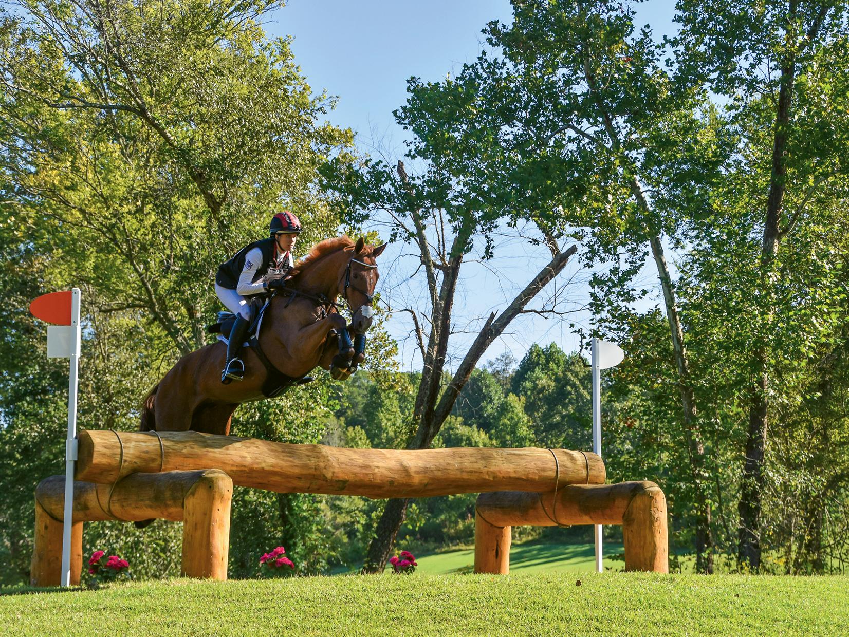 Horse Power Wnc Magazine