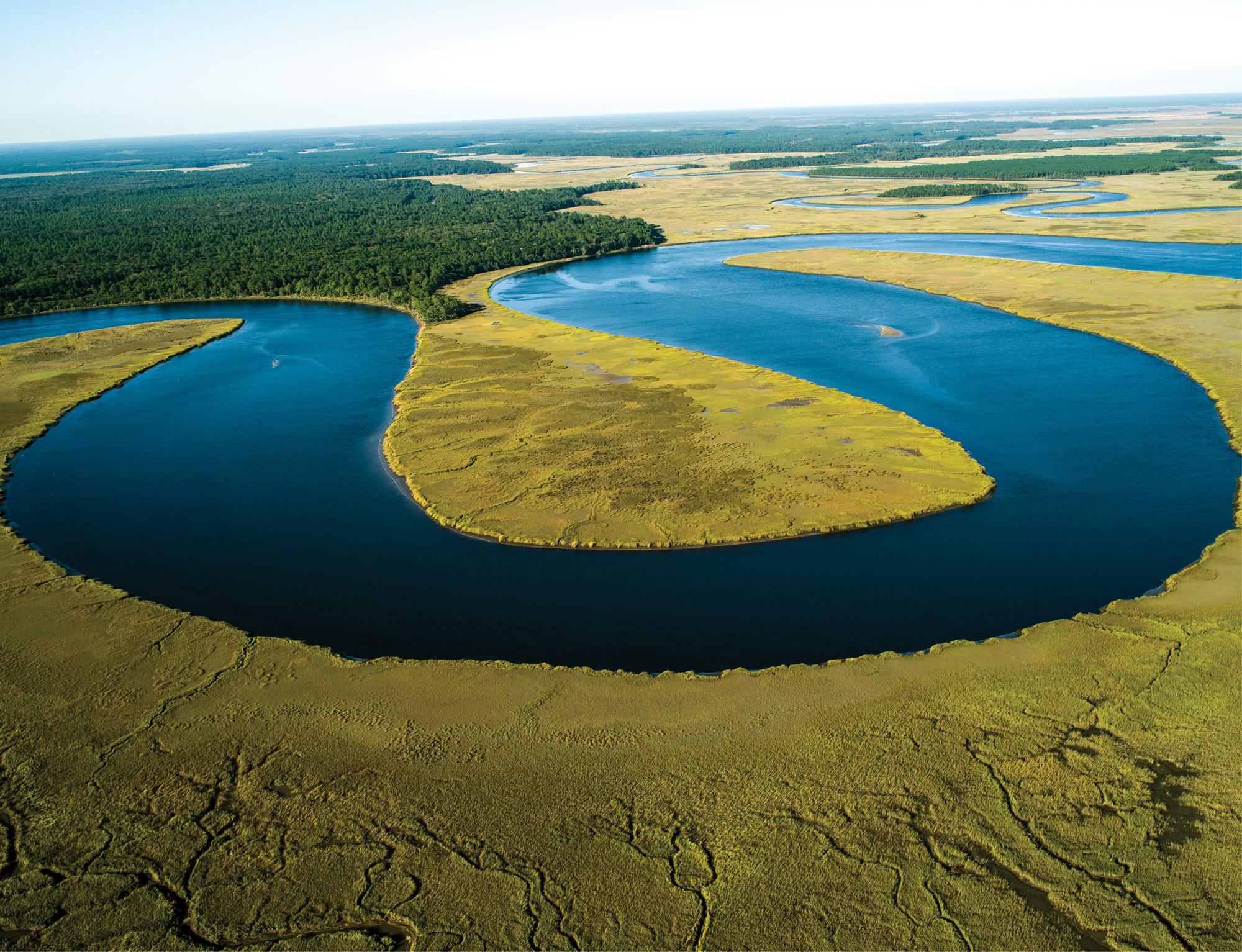 Wetlands on Combahee River  (Beaufort; October 14, 2015)