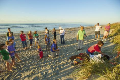 "Onlookers watch an Isle of Palms team inventory a ""boiled"" (or hatched) nest, looking for stragglers."