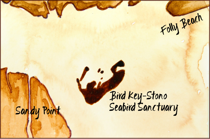 Bird Key-Stono Seabird Sanctuary