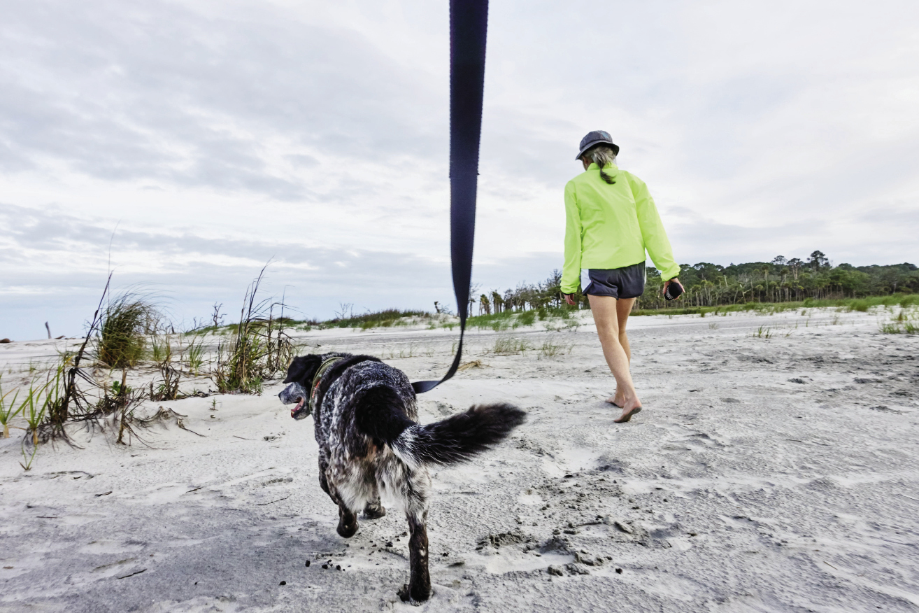 Hunting Island State Park: Sparky, the hound