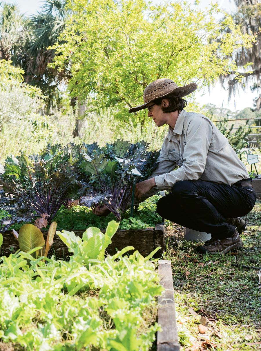 Gardener Claudie Babineaux.