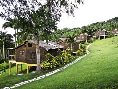 In the island's interior, Lush Life Nature Resort's cottages and the Caribbean restaurant Naniki are clustered on a secluded hilltop fringed by the rainforest.