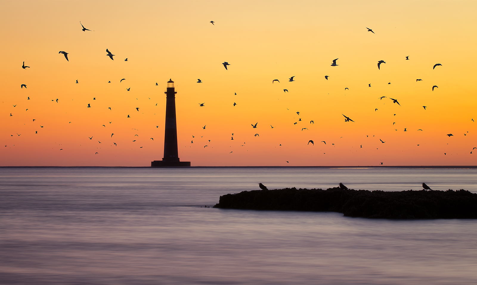 "FINALIST Professional category: Swarm by Taylor Franta; ""The birds come to life as the sun begins to warm the sky near the Morris Island Lighthouse on 3/3/16.  During low tide a sandbar forms out by the lighthouse and the birds seem to enjoy resting their wings on this sandbar. As the tide comes in, however, they are forced to somewhere else to rest."""
