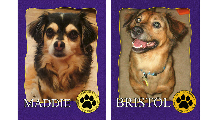 "All of MUSC's therapy dogs have trading cards for kids to collect. To donate, visit <a href=""http://www.musc.edu/giving/pet"">www.musc.edu/giving/pet</a>."