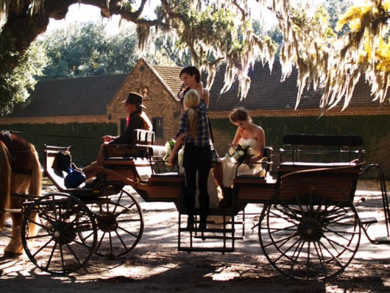 16)	Belgian draught horses pull wagons of visitors—and sometimes bridal parties—across the grounds at Middleton Place.