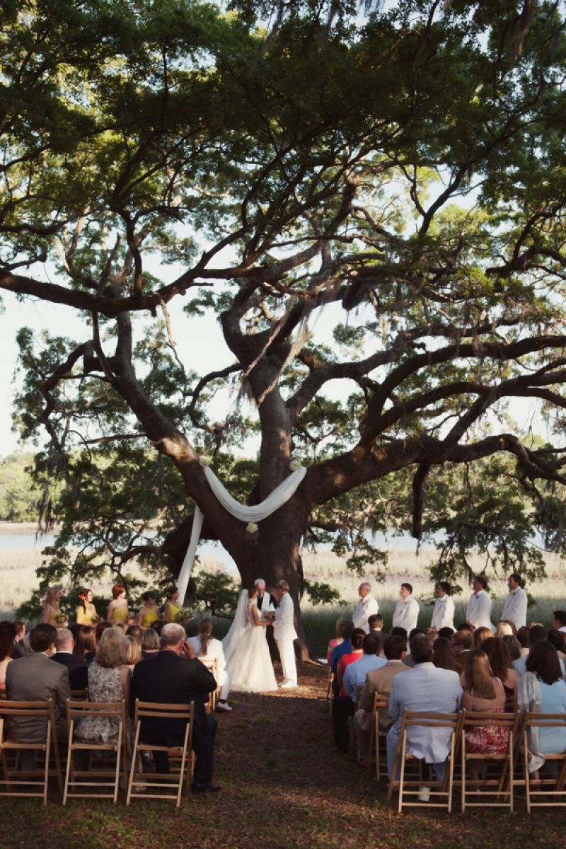 SOUTHERN GRACE: For the ceremonial arch, a piece of white fabric draped over the tree's branches adding a simple yet formal touch to the outside setting.