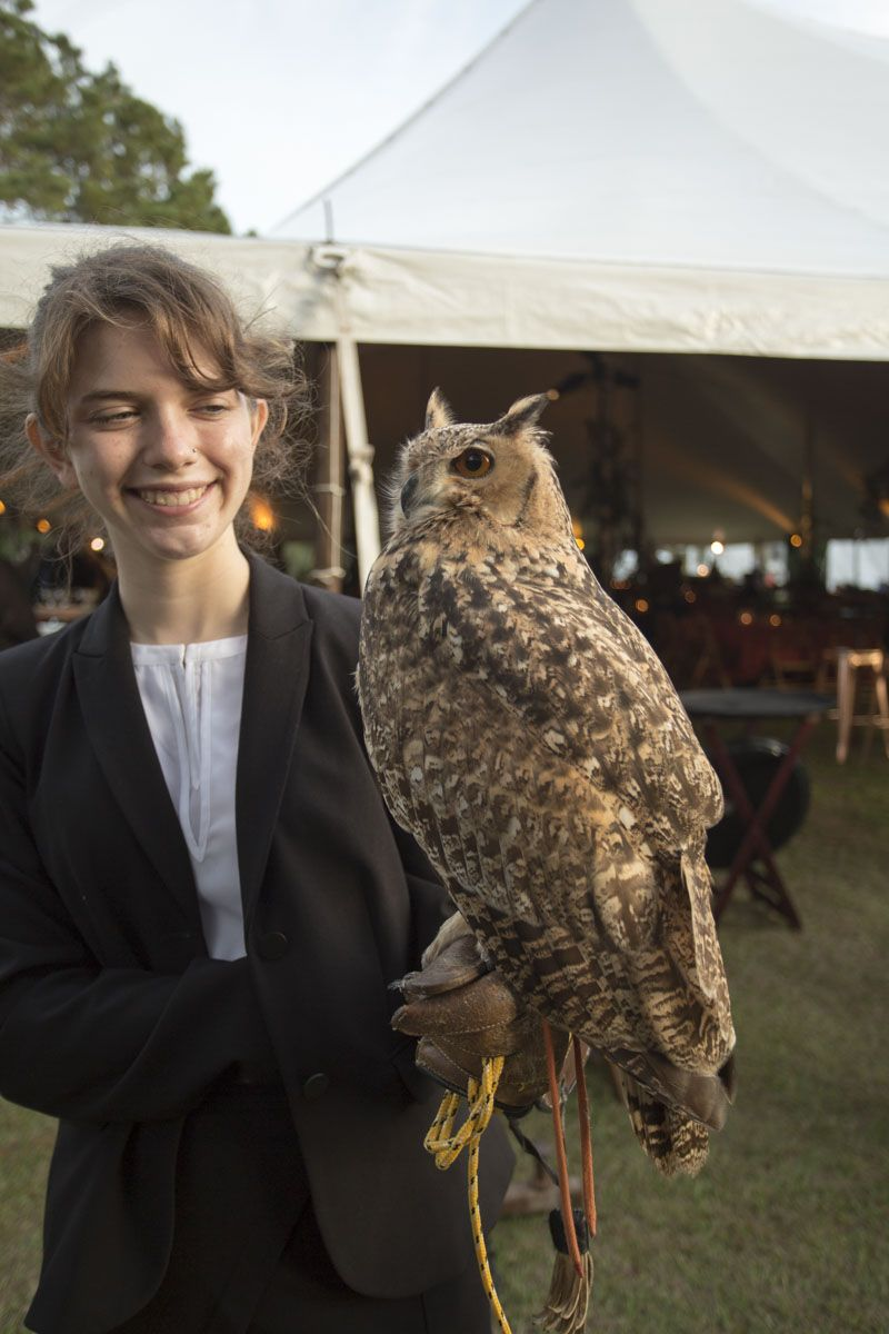 A volunteer with the Center's resident eagle owl