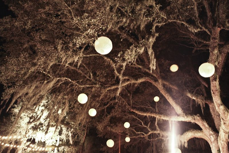 TRIM THE TREE: Oak trees were illuminated by 20 paper lanterns, hung and lit by the bride and groom themselves.