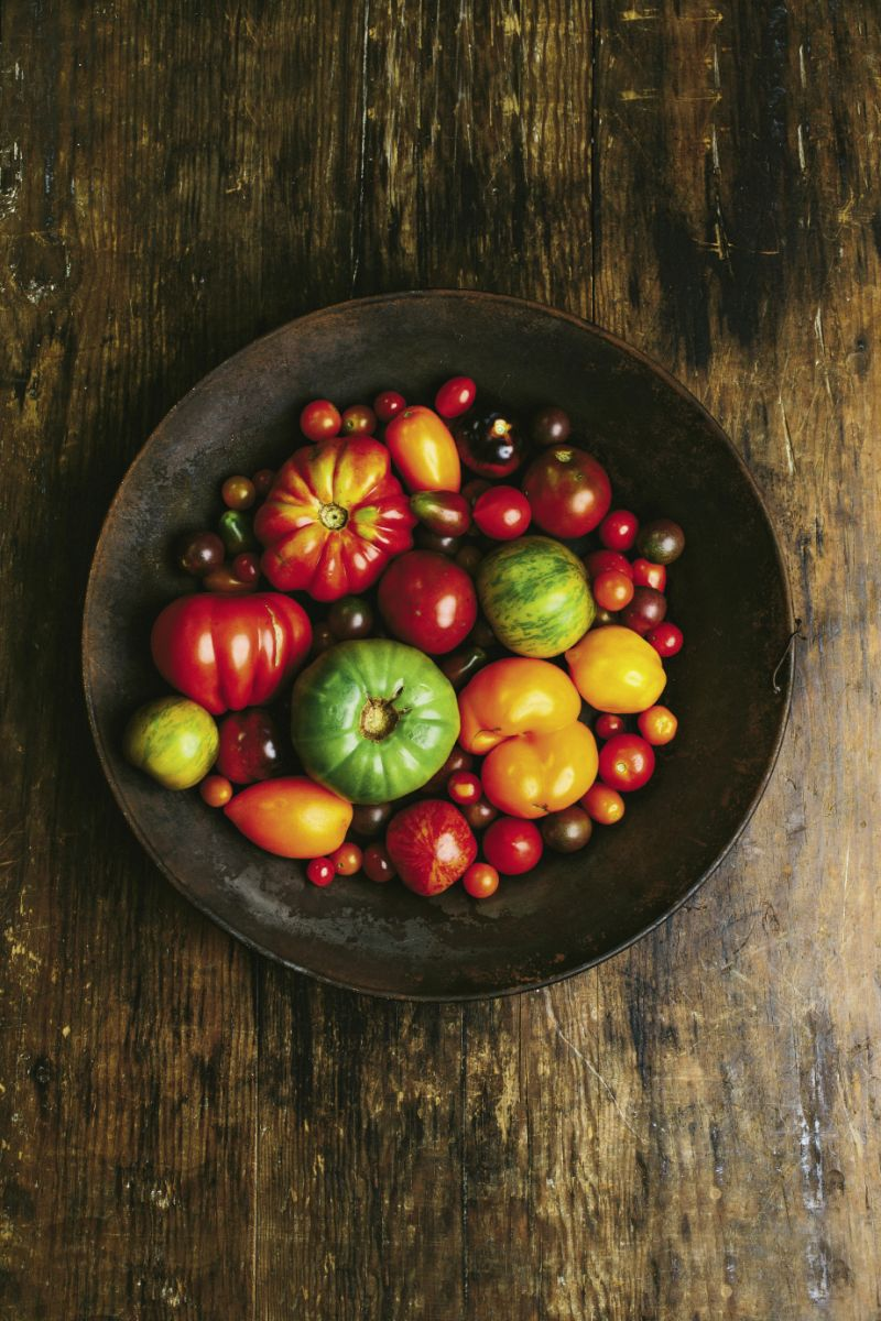 Summer's Bounty:  A bowlful of locally grown heirlooms,  including the large red Costoluto Genovese, the striped red Tigerella and Green Zebras, and Orange Bananas