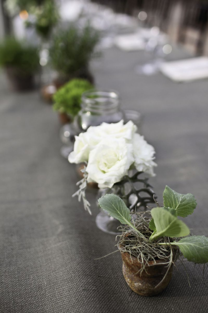 "PLANTING AN IDEA: ""Share your vision, then trust your vendors with the details,"" says Kiften. Case in point? This charmingly planted row atop a long farm table from Event DRS."
