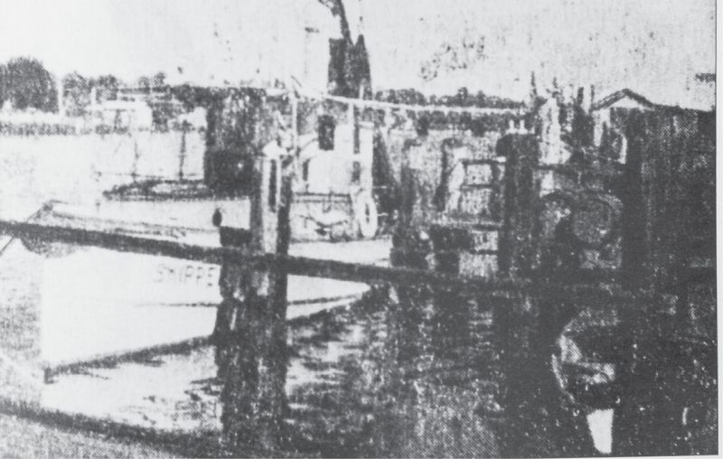 The Magwood family has been synonymous with Shem Creek since Captain W.C. Magwood brought the Skipper, a freight boat converted for shrimping there in 1930.