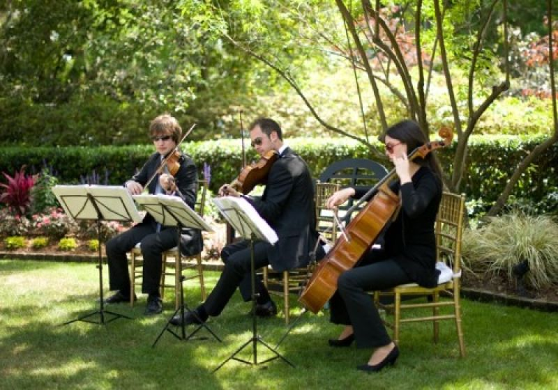 A string quartet adds a classical soundtrack to the afternoon