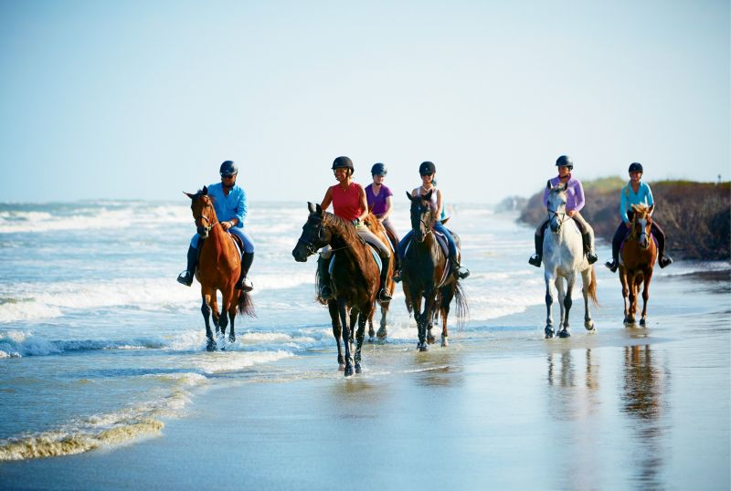 1. Beach Horseback Rides