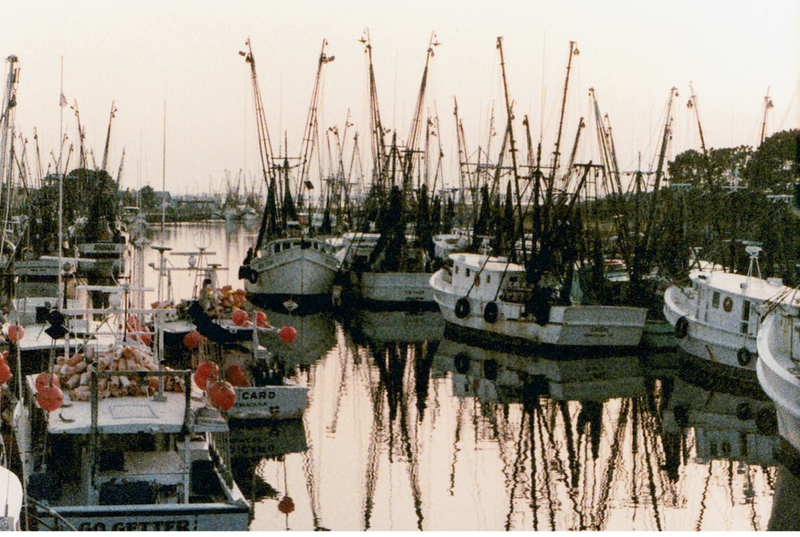 Shrimp boats several deep on the docks in the 1970s