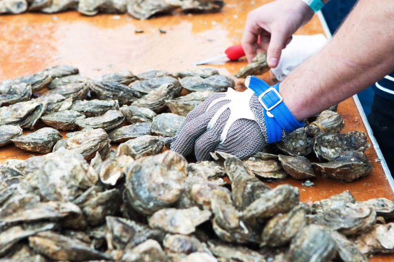 80,000 total pounds of oysters were consumed at the festival