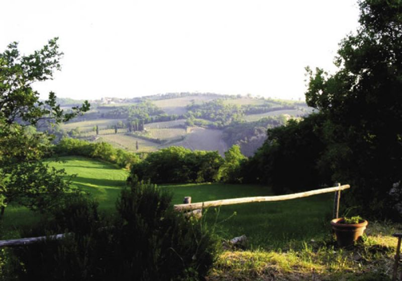 The farmhouse overlooks rolling hills of vineyards, many of which grow grapes for Brunello, the signature wine of Montalcino.