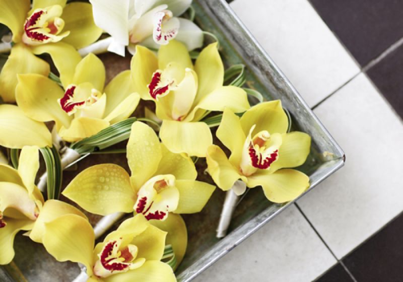 WILD FLOWERS: Groomsmen donned lemon-yellow orchids that matched the bridesmaids' bouquets.