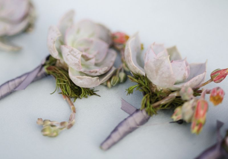 WRAPPED UP: Jason and his groomsmen sported succulent boutonnieres tied with the same gray as the bridesmaids' frocks.