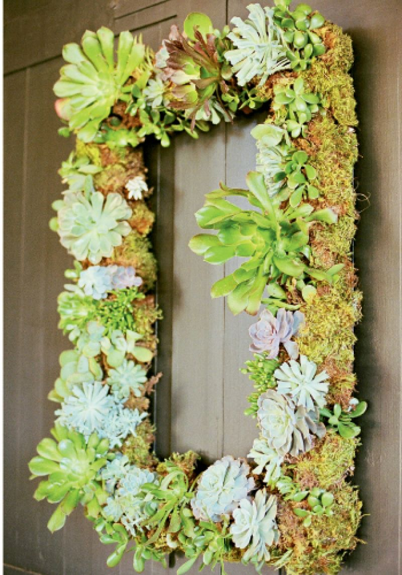 HANGING GARDEN: Blossoms Events adorned rectangular moss-covered frames with succulents and hung them on the clubhouse doors, adding color to the sedate chocolate-colored backdrop.