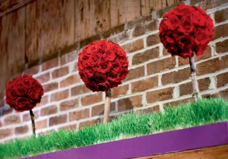 "ROSES ARE RED: To top the immense fireplace mantel, John and his mom built flower boxes, which were ""planted"" with wheatgrass that sprouted crimson topiaries."