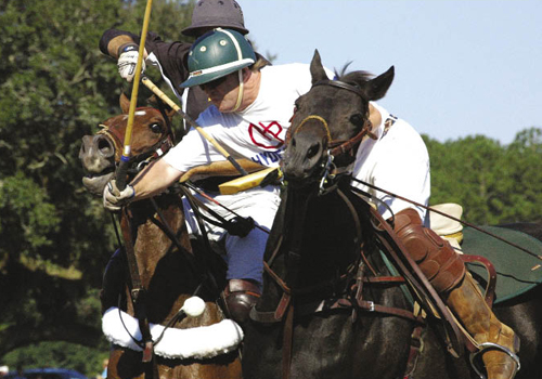 Local players ride alongside those visiting from other states, as well as from England, Holland, and Argentina, the country that produces the best polo players in the world.