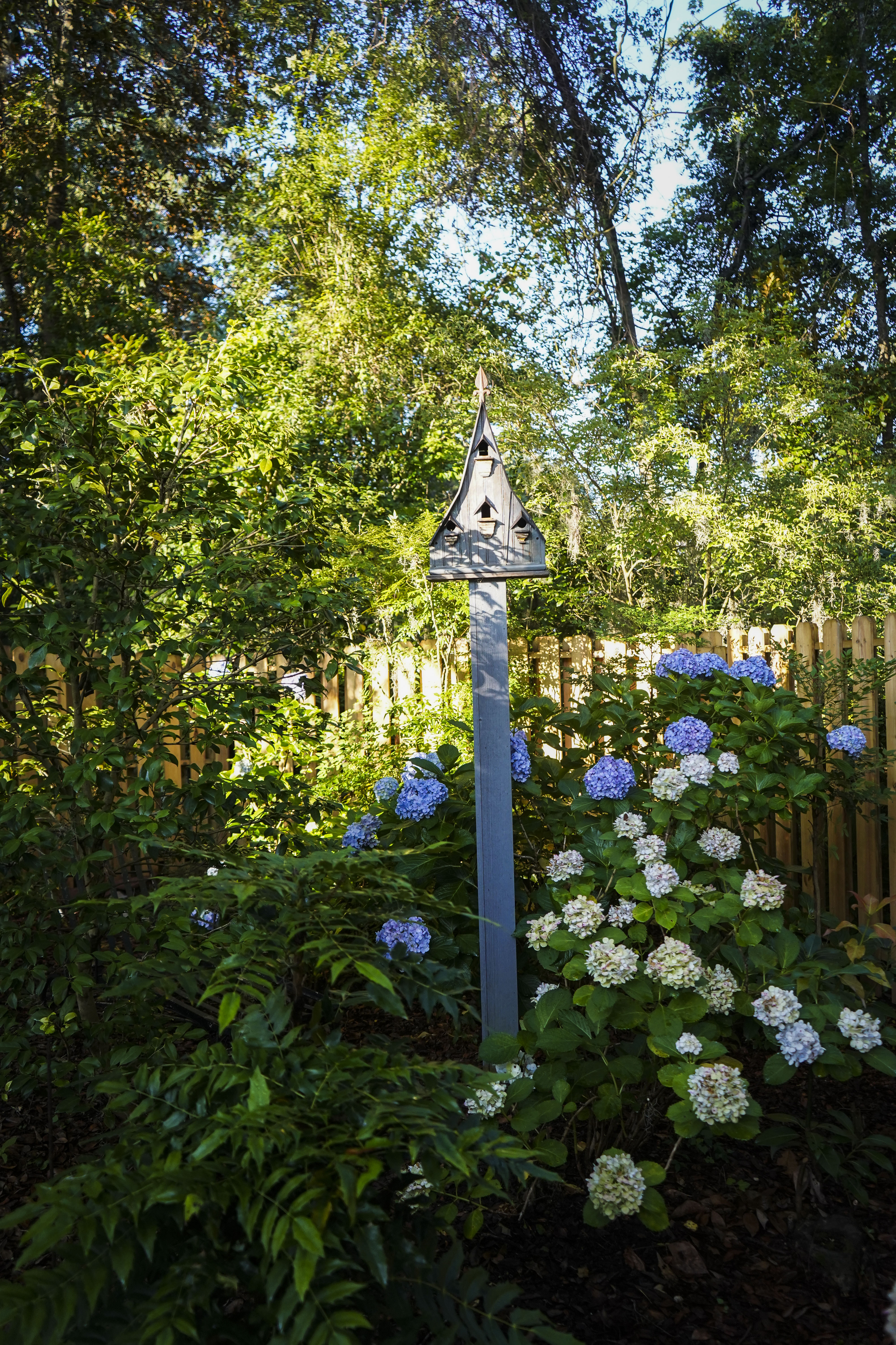 """Great Accommodations: """"Birds come to splash and drink and eat from my feeders, but not a single one has ever lived in the houses I put up!"""" she says, pointing to numerous residences that at least provide charming gathering points for plantings such as 'Charity' mahonias and hydrangeas."""