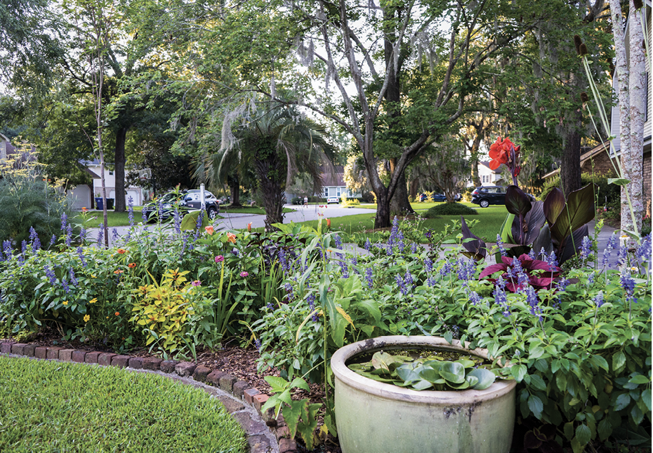 """Acing the Test: Arcing alongside the driveway, this sunny bed was born as a """"trial garden""""—a place for Rivers to test plants' potential before introducing them into clients' spaces. Now it's fertile ground for species that support wildlife, such as the native giant coneflower, whose seed pods tower on silvery blue stalks at right, high above even the canna lilies."""