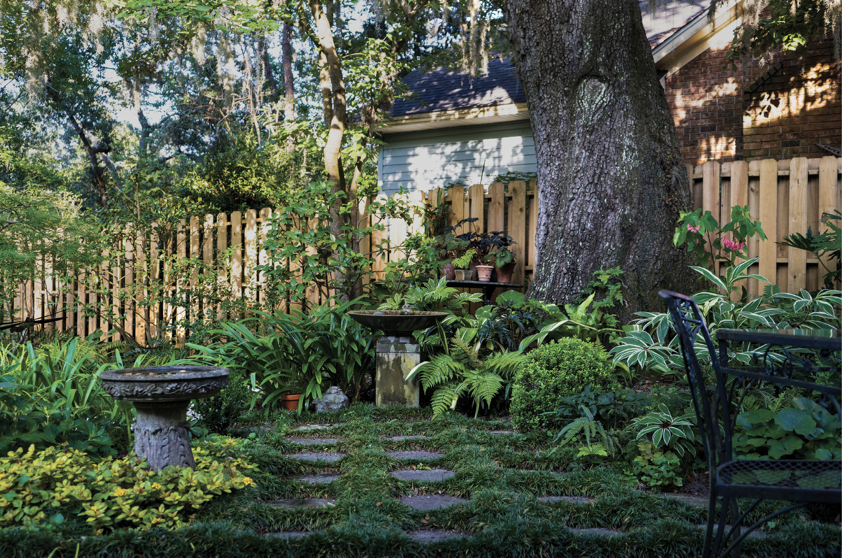 Creature Comforts: It took Rivers years to finish planting dwarf mondo grass amid the stepping stones laid in several areas throughout the back garden. Here, the inviting combination draws one from the patio into a verdant nook ending in a birdbath.