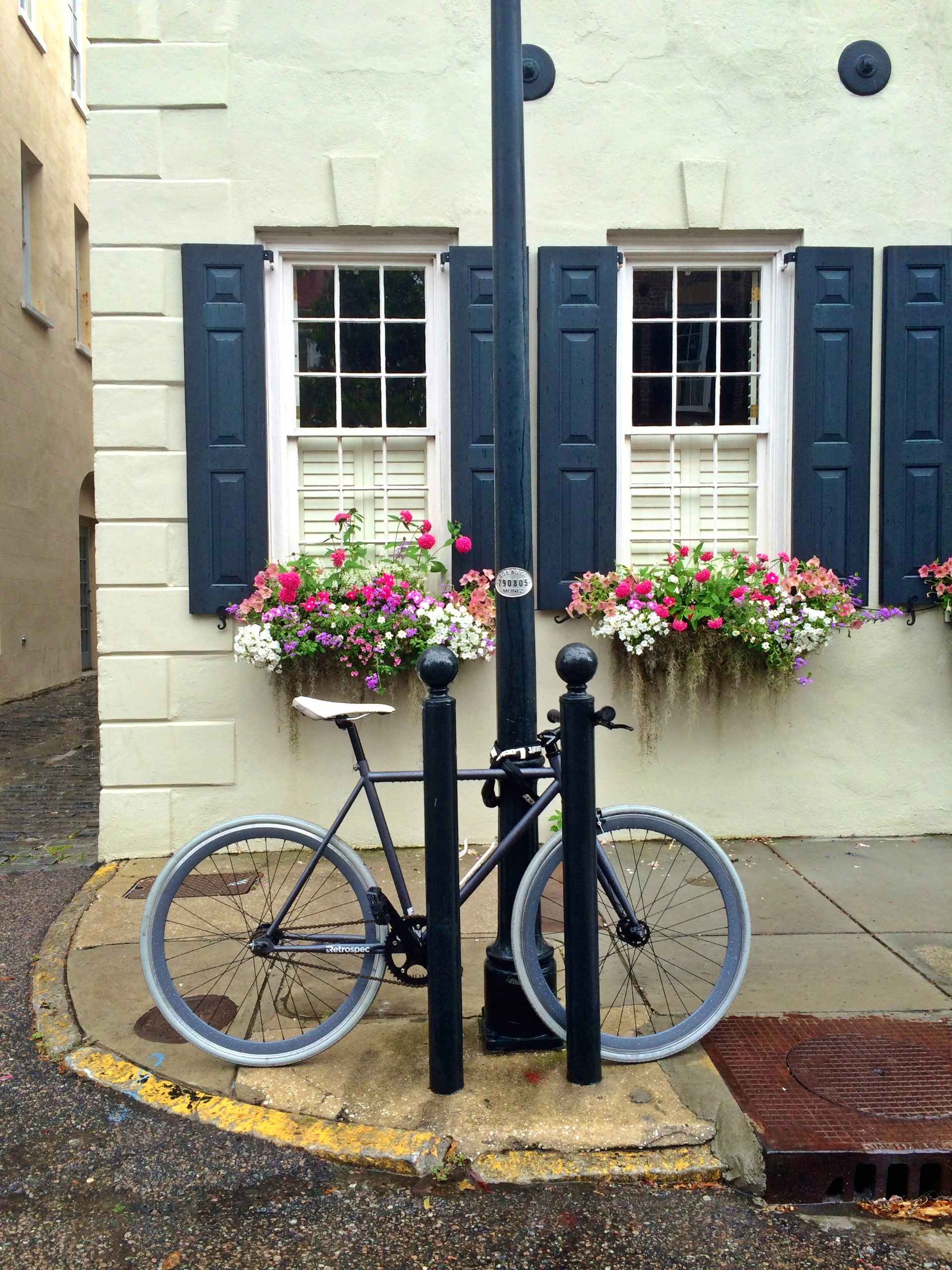 "HONORABLE MENTION Professional category: Charleston Charm by Laura Hasemeyer; ""Only the most charming city in the world! State Street, Spring 2014"""