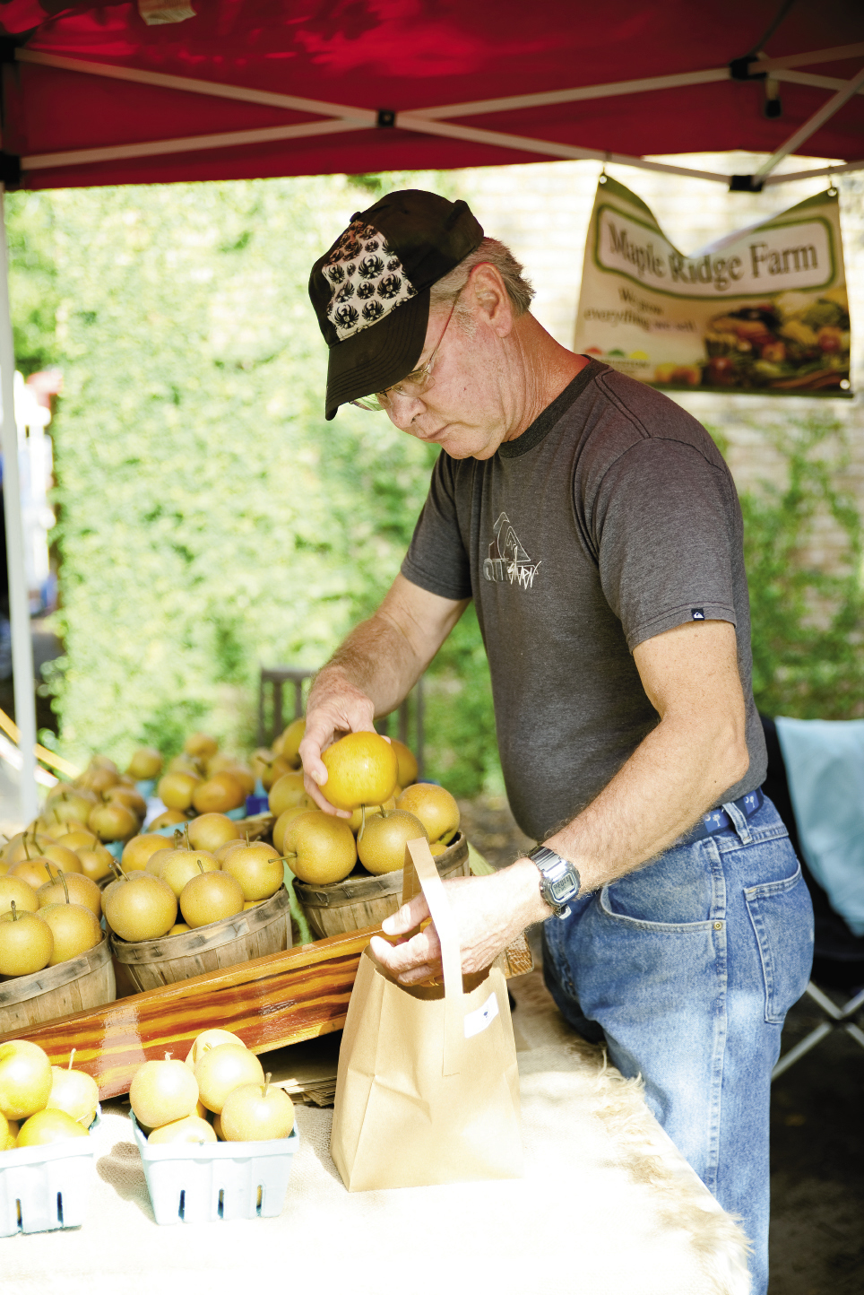 Fritz Aichele of Maple Ridge Farms bags up Asian pears