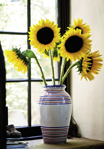 Sunflowers give a nod to the central Italian countryside.