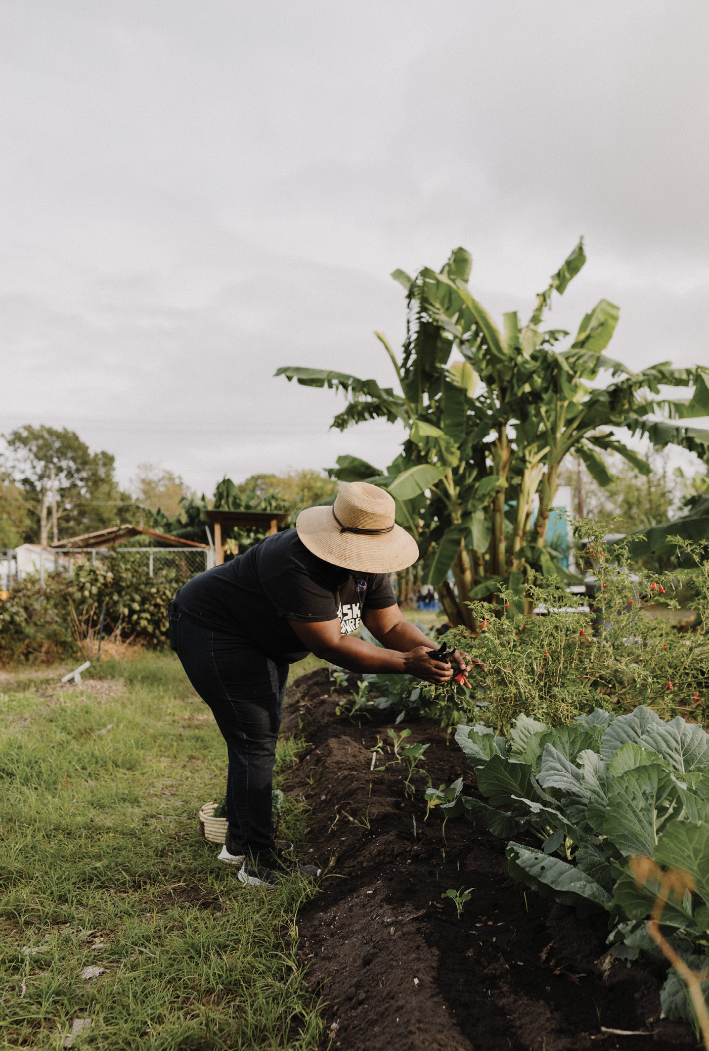 Green Thumb: Jenkins enjoys the hands-on, and nonstop, work of urban farming, from composting to planting to weeding and harvesting, but mostly she enjoys sharing her passion for a regenerative movement—one that breaks the cycle of poverty through growing health, jobs, and wealth.