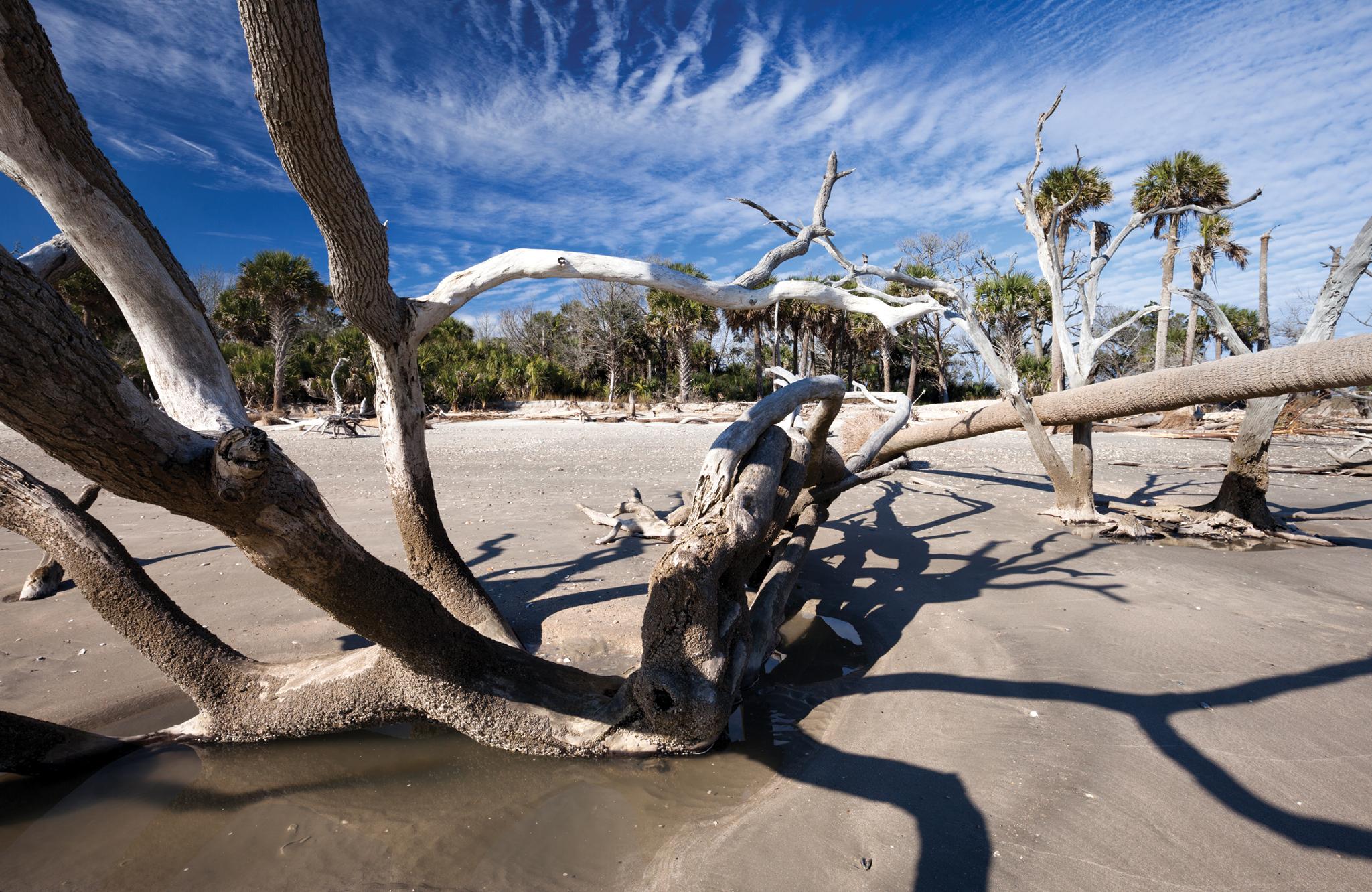 Botany Bay Plantation Heritage Preserve