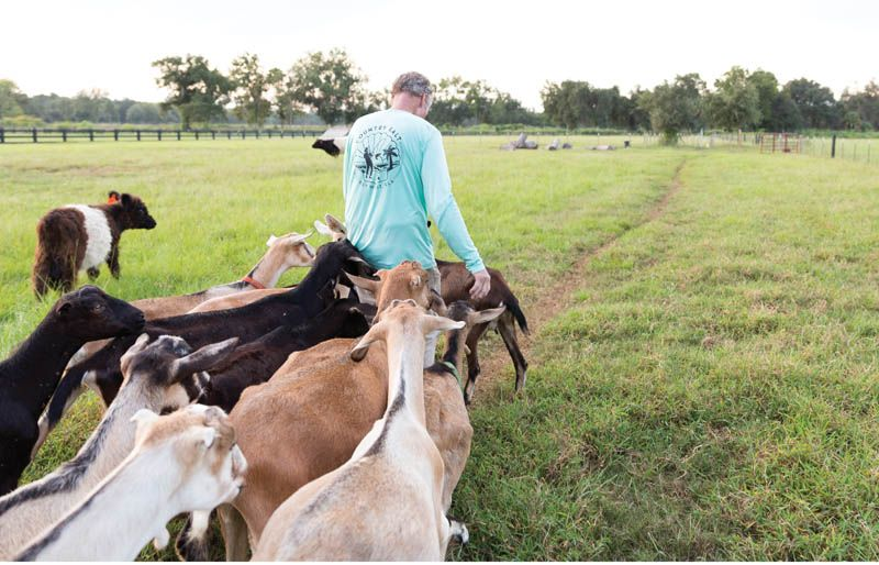 Kidding Around: Danny Sillivant leads the herd that stole his heart and led him to shift from a career in real estate to goat farming. The Goatery welcomes visitors to meet and mingle with their friendly livestock.