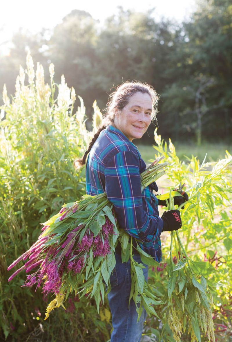 In Bloom: Jana Mendenhall was an experienced organic farmer in California before moving east and now grows an array of cut flowers—a favorite nectar source for Hudspeth's nearby apiary.