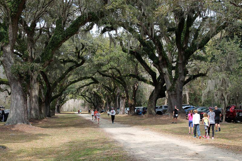 The raceway featured an oak allée