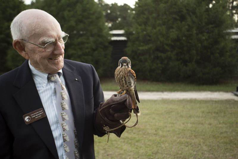 Volunteer Tom McServy with a four-month-old American kestrel