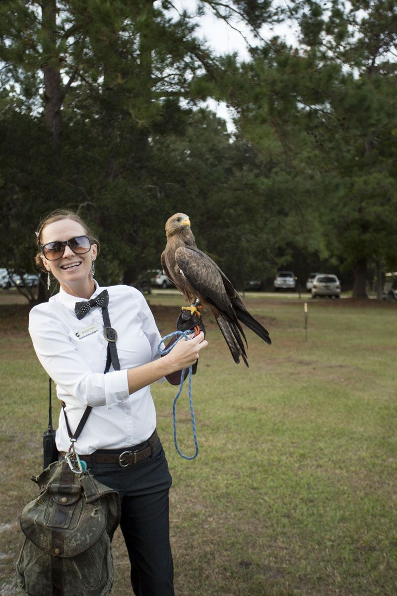 Audrey Poplin with a yellow-billed kite