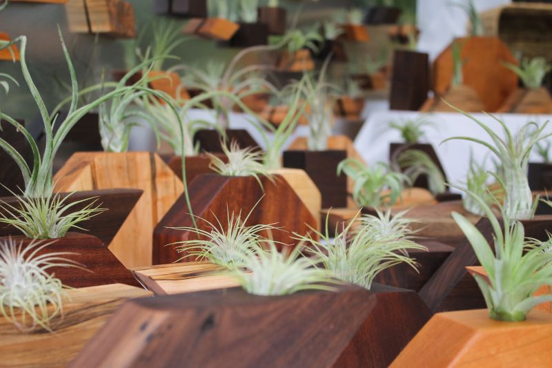 Restored Board brought over 100 geometric air plant containers and magnets made from reclaimed wood.