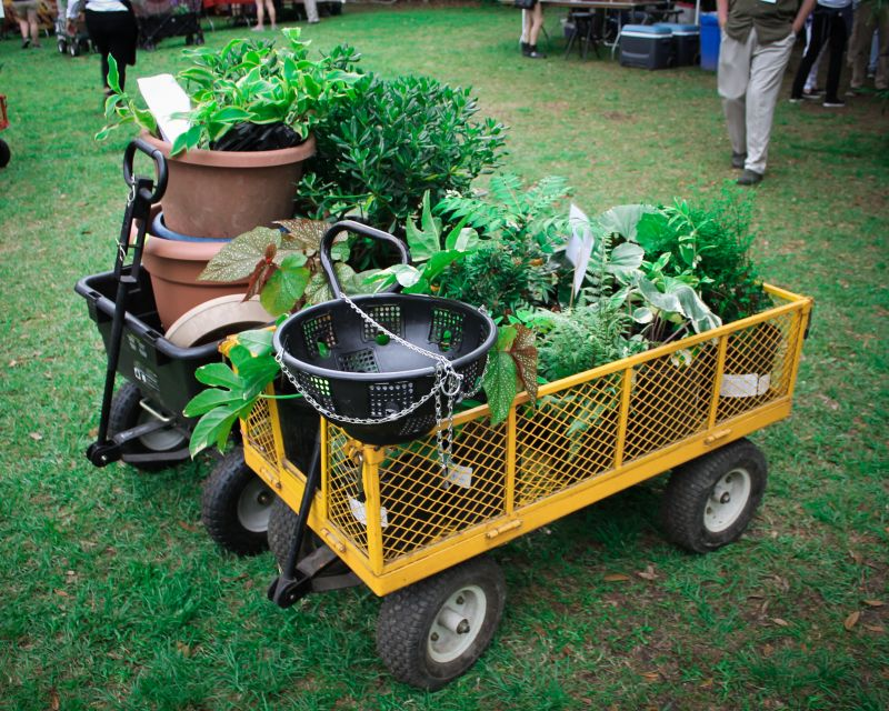 Old Towne Creek County Park was the perfect venue for guests to peruse local plant offerings. Guests either brought their own wagons, or used the ones supplied for easy transport.