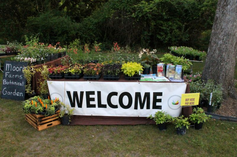 Attendees were welcomed into a plant lover's paradise.