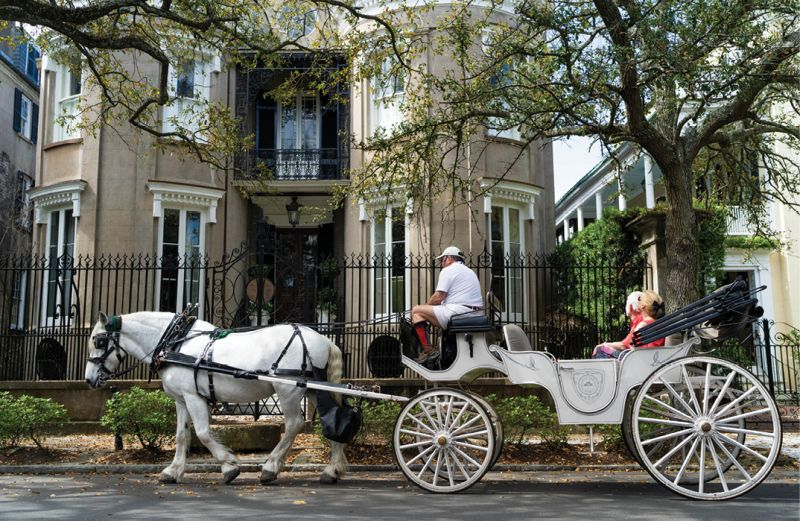 """While regulated by the city, horse carriages can add to downtown traffic woes, and tourists crowd sidewalks. The city's 2015 Tourism Management Plan is in need of updating, with """"more teeth and more accountability,"""" says Historic Charleston Foundation's Winslow Hastie."""