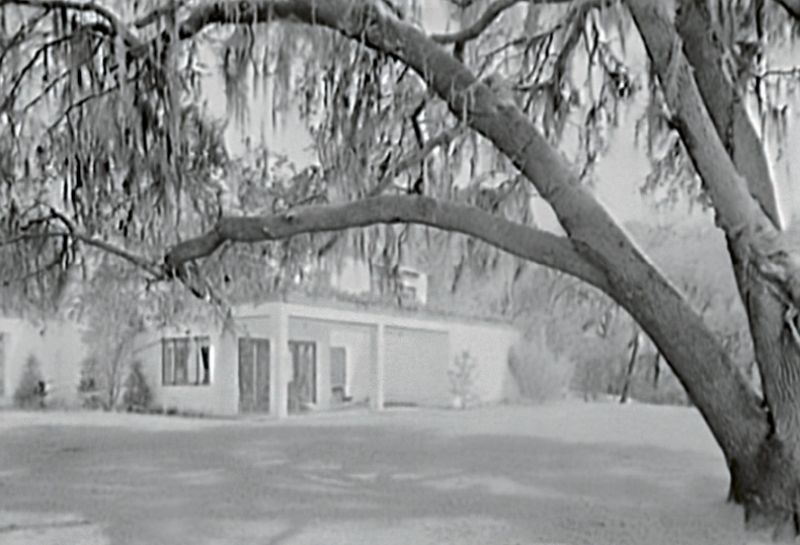 "Millionaire's Playground: Victor and Marjorie Morawetz were among a fortunate group of wealthy Northerners who discovered the South Carolina Lowcountry in the 1920s and 1930s as a perfect place for winter homes and/or hunting retreats. Like the Morawetzes' restoration of Fenwick Hall, the monies brought by members of this ""second Northern invasion"" saved many of the area's historic properties, which were then in imminent danger of destruction by neglect. Many still flourish from the generosity of their benefactors, and some, including the former Mepkin Plantation (pictured here) are open to the public."