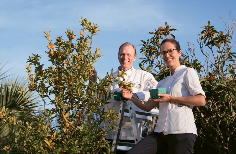 A Bird's-Eye View: Melanie Durant among the kumquat trees with Bernd Gronert at his Cypress Hill Farm.
