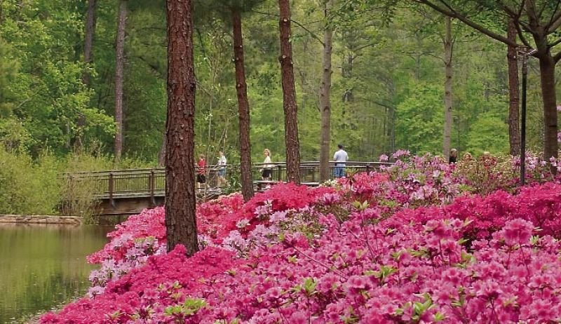 Callaway gardens near atlanta charleston sc charleston - Callaway gardens mountain creek inn ...
