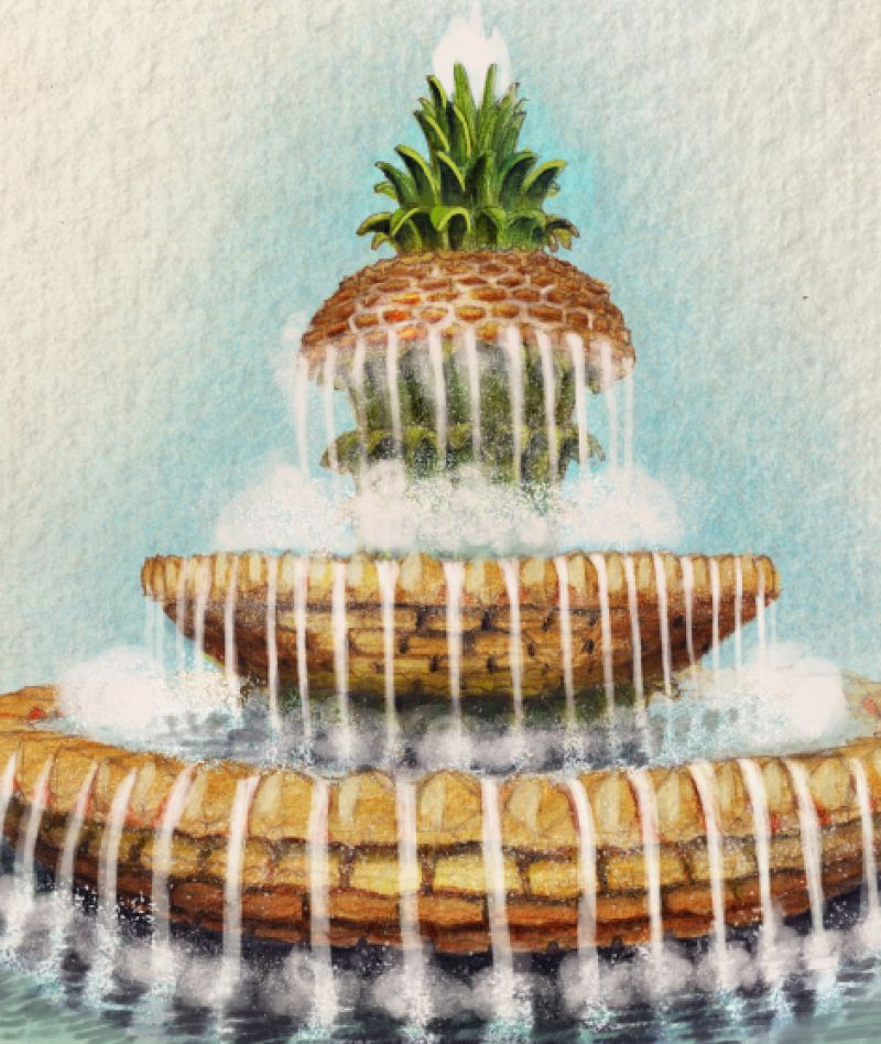 Charleston Magazine Pineapples Charleston Sc