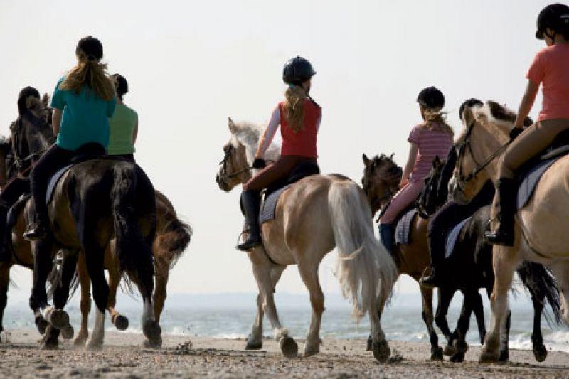 Saddle Up! | Charleston SC | Charleston Magazine