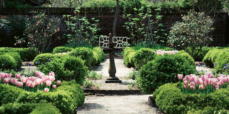 Charleston, SC- Charleston gardens