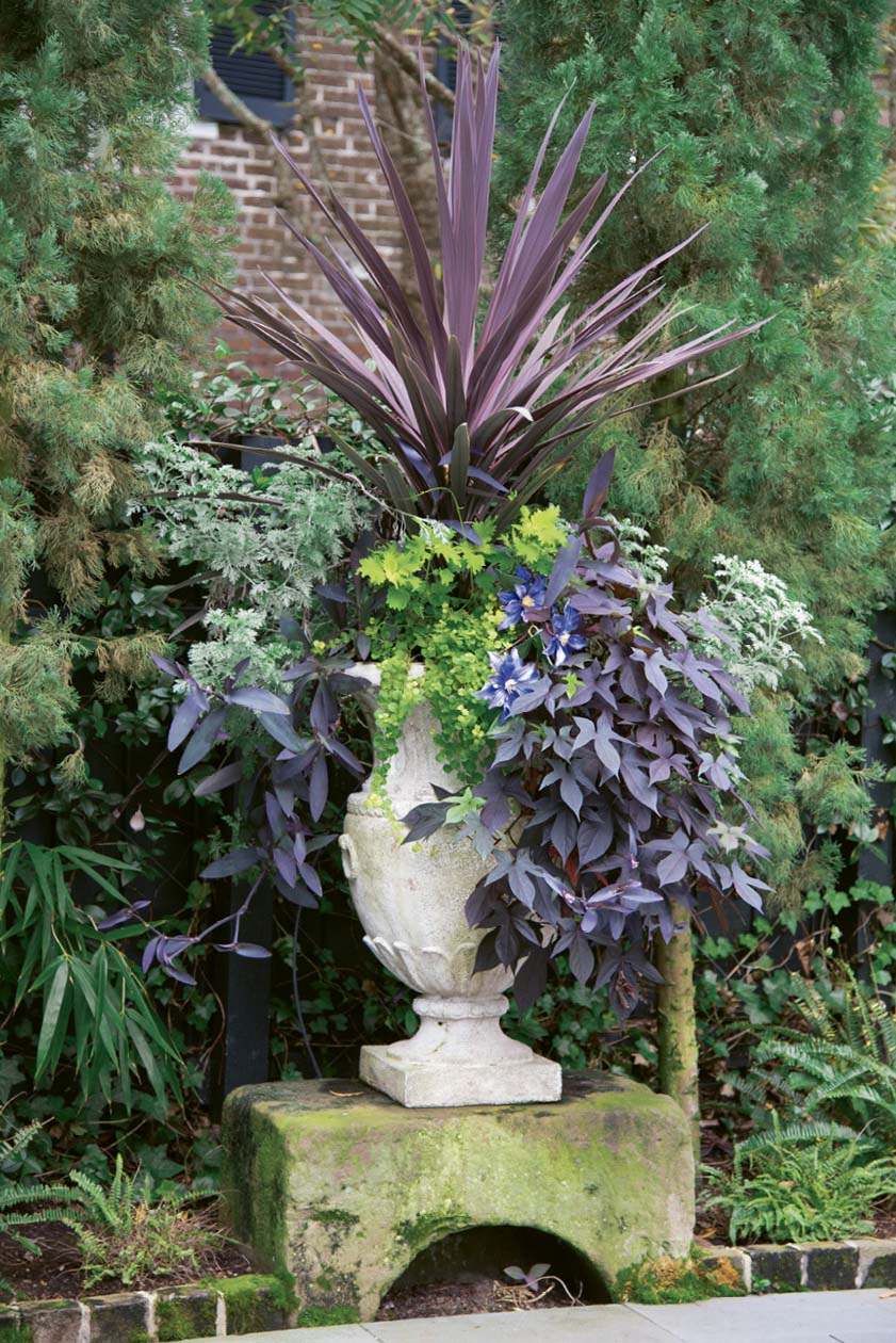 "A Step Up: For a striking focal point, Susan fills an urn with foliage in shades of burgundy, purple, and chartreuse. Last year, she allowed one bloom—that of purple passionflower—to sneak into the planter, which is displayed on a centuries-old carriage step (or ""upping stone"") they found buried by weeds."